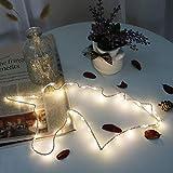 Sparkling LED Draht Einhorn Motif Light, Metall LED Lichterketten Batteriebetriebene Innenbeleuchtung für Wohnzimmer Schlafzimmer Party Weihnachten Hochzeit Geburtstagsgeschenk (Warmweiß)