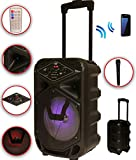 Karaoke Anlage mobile PA Lautsprecherbox Trolley USB MP3 Wireless LED K8-8 DMS