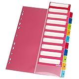 Herlitz 10913929 Register 1-10, 21 x 29,7 cm, PP, farbig mit IndexBlatt und Eurolochung