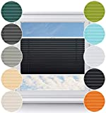 Rollo Studio Thermo Fenster Plissee auf Maß, Viele Größen und Farben, Montage in der Glasleiste für alle Fenster, Verdunkelungsplissee, Fensterrollos, Schwarz