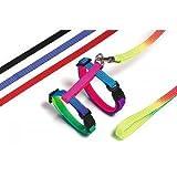 Art Sportiv Plus Kaninchengeschirr und -Leine L: 140 cm B: 1 cm farblich sortiert