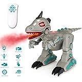 deAO RCID-G RC Intelligenter Dinosaurier-Roboter mit Raucheffekt Lichter und Geräuschen, Infrarot-Fernbedienung, elektronisches T-Rex Spielzeug (grau)
