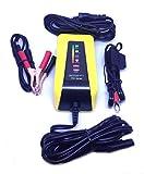 MOTOBATT Batterie-Ladegerät für Motorräder Harley Davidson u.a. 6V/12V 1.0A