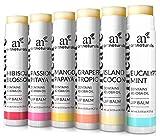 ArtNaturals Lippenpflegestift Lip Balm Set - (6 x 0.15 Oz / 4.25g) - 6 Natürliche Pflegestifte mit Ausgewählten Verschiedenen Aromen - mit Bienenwachs und Jojoba-Öl für zarte Lippen