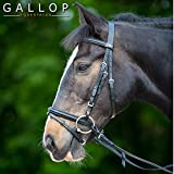 Gallop Zaumzeug aus Leder in Braun, Warmblut/Full