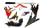 Katzenspielzeug Set Premium mit Maus, Katzenangel mit Natur-Federn, Angel extra lang & Interaktiv = Katze Beschäftigung - Jagdtrieb und Intelligenz Teleskop stabil, sicher und 97 cm lang & von Santa Cruz Club + Gratis eBook Katzenratgeber