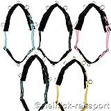 Heinick-Reitsport Longiergurt Shetty Minishetty mit 13 Ringen in 5 Farben (Shetty, Rosa)