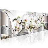 murando - Bilder Blumen Orchidee 150x50 cm Vlies Leinwandbild 1 TLG Kunstdruck modern Wandbilder XXL Wanddekoration Design Wand Bild - Orchidee Blumen b-A-0086-b-b