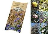 Saatgut Set: 'Wilde Obstbäume' 3 Wildobst Sorten als Baumsamen in schöner Geschenk-Verpackung