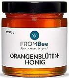 Frombee - Orangenblütenhonig aus Spanien - (1 x 500 g) aromatisch fruchtig für die gesunde Süße im Müsli, Tee und Smoothie