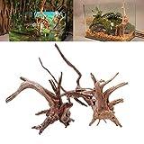 ECMQS Aquarium Dekoration Holz Natürliche Stamm Treibholz Baum Aquarium Pflanze Stumpf Ornament Landscap Decor (M)