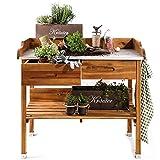 TOM-GARTEN Wetterfester Pflanztisch für Garten & Balkon | Verzinkte Metall-Arbeitsfläche inkl. 2 Schubladen und 3 Haken | H/B/T 90 x 100 x 55cm | inkl. 4x Gemüsesaatgut von TOM-GARTEN