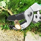 GRÜNTEK Amboss Gartenschere TUKANE 195mm, Klinge aus japanischem SK5 Stahl, Baumschere mit SOFT-TOUCH-Griffe