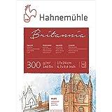 Hahnemühle 10628983 Aquarell-,Calligraphie-,Urkunden- und Postkartenblöcke Aquarellblock 300 g 12 Blatt
