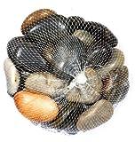 Deko-Steine im Netz - bunt - 1 kg - Zierkiesel / Natursteine - verschiedene Körnungen (10 - 40 mm)