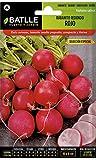 Batlle Gemüsesamen - Radieschen rund - Ausw. Especial (1800 Samen)