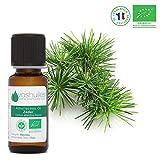 Ätherisches Bio-Zedernholzöl - 10ml