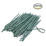Pflanzenbinder Einstellbar 100 Stück, Pflanzen Anbinder Kunststoff Schnellbinder für Pflanzen Unterstützung