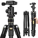 K&F Concept TM2324 Kamerastativ Reisestativ Fotostativ Kamera Stativ für Canon Nikon Sony Spiegelreflexkamera aus Aluminium inkl. Kugelkopf Schnellwechselplatte und Stativtasche 156cm
