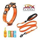 JAXplanet Hundehalsband, Halsband mit Leine, Zubehör-Set, stilvoll, stabil, sicher, 3M, reflektierend/bequem, Haustierleine für kleine und mittelgroße Hunde + gratis Zubehör-Geschenk