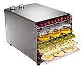 VIOY Edelstahl-Trockenfrucht-Maschinen-Frucht-Dehydrierungs-Lufttrockner-Kleiner Haupthaustier-Nahrungsmitteltrockner,Silber,Einheitsgröße