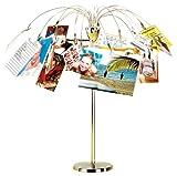 Umbra Fotofalls Fotobaum und Bilderrahmen mit 18 Clips zum Halten von Fotos, Postkarten und Mehr – Foto Collage zum Selbermachen mit 360 Grad Optik, Nickel