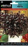 Batlle Kräutersamen - Basilikum Purpurfarben (Samen - 30cm)
