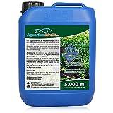 AquariumDirekt Pflanzendünger 5 Liter (GRATIS Lieferung in DE - Besonders schöne, sattgrüne, kräftige Aquarium-Pflanzen - Auch Garnelen- und Nano-Aquarien geeignet)