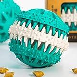 Pfotenolymp Premium Snackball für Hunde Kauspielzeug zur Unterstützung der Zahnpflege - Hundeball für Kleine bis mittlere Hunde und für Welpen während des Zahnwechsel - Dentalball