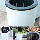 GEZICHTA selbstwässernde Blumentopf, runde Form Kunststoff weiß Pflanzgefäß Topf Indoor Outdoor, für Haus/Garten, xl