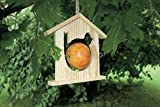 Beleduc-40709-Set Kreative Freizeitbeschäftigungen,-Bird Stop