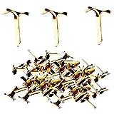 1000 St. Flachkopfklammer Musterbeutelklammern Messing Metall Bastelklammern 14mm Durchmesser Versand geeignet