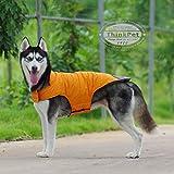 ThinkPet Dog Hunde Jacke Warm wasserdicht Canine Coat Kältebeständige Winter Abenteuerausrüstung mit reflektierenden Streifen