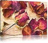 getrocknete Rosenblüten Format: 80x60 auf Leinwand, XXL riesige Bilder fertig gerahmt mit Keilrahmen, Kunstdruck auf Wandbild mit Rahmen, günstiger als Gemälde oder Ölbild, kein Poster oder Plakat