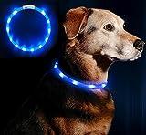 Anicoll LED Leuchthalsband Hunde Halsband USB wiederaufladbar - Längenverstellbarer Haustier Sicherheit Kragen für Hunde und Katzen- 3 Modus 12 Lichte (blau)