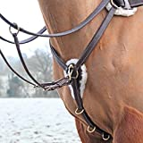 Shires Salisbury Five Point Breast Plate Cob Havana