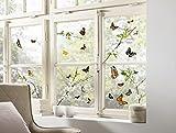 Komar - Window-Sticker CHEERFUL - 31 x 31cm - Fensterdeko, Fenstersticker, Fensterfolie, Schmetterlinge, Butterfly, Blume, Zweige - 16006