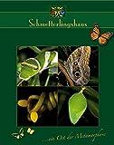 Schmetterlingshaus ... ein Ort der Metamorphose