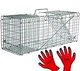 Praknu Marderfalle Lebendfalle 79cm Groß | Effektiv - Sicher | inkl. Handschuhe | für Katzen, Fuchs, Marder