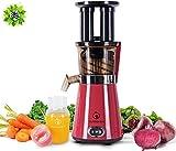 NUTRILOVERS Slow Juicer Entsafter mit 2 Einfüllöffnungen | Elektrische Obst und Gemüse Saftpresse | Geringe Drehzahl nur 60 U/min - 350 Watt | BPA-Frei Inkl. Glas Trinkflasche mit Sleeve & Reinigungsbürste