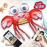 ZaxiDeel Krabbe Einleiner Drachen für Kinder ab 3 Jahren - Bestes Outdoor Spiele mit einzigartigem Design für Strand, Park und Garten, 115x100cm Flugdrachen mit Schnur und Spule
