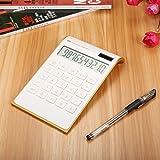 Caveen Taschenrechner Standard Business Tischrechner Schwarz/Weiß Dual-Power (Solar und Batterie) Weiß