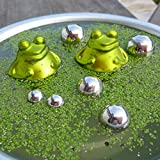 Gartenzaubereien Teich-Set Schwimmfrösche mit Silber Kugeln