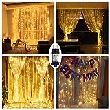 LED Lichtervorhang Warmweiß für Innen Außen Fenster Weihanchten Geburtstag Party Hochzeit IP44 31V Niederspannung 8 Lichtmodi 300er LEDs Lichterkette 3M x 3M Weihnachtsbeleuchtung