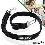 BELISY Hunde-Sicherheits-Gurt fürs Auto - höchste Sicherheit für Dich und Deinen Hund - mit besonders elastischer Ruckdämpfung für maximalen Komfort - passend für alle Hunderassen - Premium Markenqualität - Schwarz