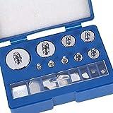 Kalibrierung Gewichte, 17teilig Kalibriergewicht Set 10mg - 100g Präzision Kalibrierung Abweichung +/- 0,003g für Digital Schmuck Waage Labor Studium Gewichte