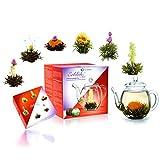 Creano Teeblumen Mix - Geschenkset 'ErblühTee' mit Glaskanne 500ml Weißtee & Schwarztee mit 6 Teekugeln je 3x weißer & schwarzer Tee