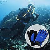 Tauchhandschuhe Premium Neoprenhandschuhe hochelastisch Handschuhe 2mm für Sport im Wasser Tauchen Segeln Surfen