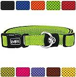 DDOXX Hundehalsband Air Mesh   für große, mittelgroße, mittlere & kleine Hunde   Halsband Hund   Hundehalsbänder   Katzen Halsbänder   Katzenhalsband   Zubehör   Grün, XS - 1,5 x 21-30 cm