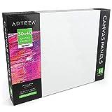 ARTEZA Leinwand   30cm x 40cm Großpackung mit 14   Weiß, Grundiert 100% Baumwolle   Ideal für Malerei, Acrylgießen, Ölfarben & Nasse Kunstmedien   Leinwände für Profis & Hobbymaler